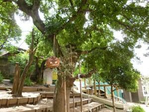 木の上のチェシャネコ
